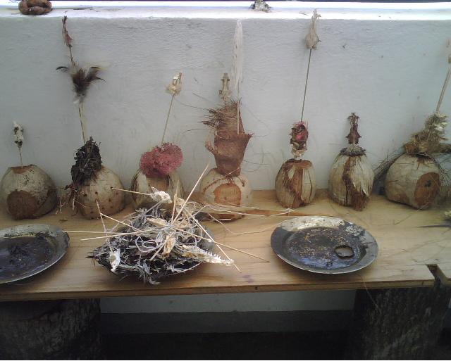 Instalación  Cocos,  fibras y cera