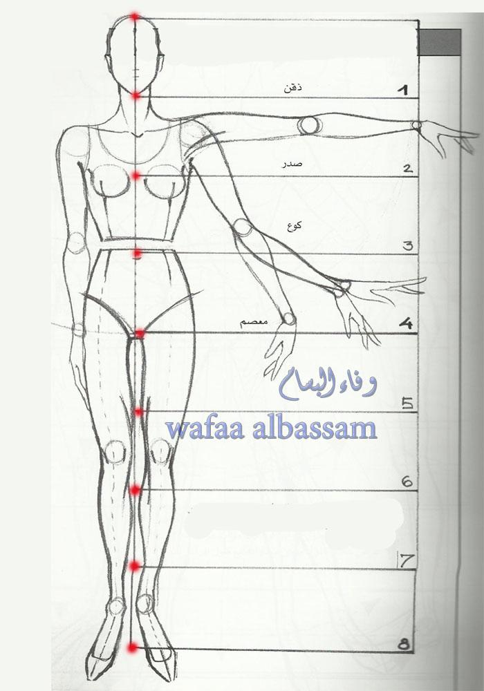 المصممة وفاء البسام رسم الجسم Drawing The Body