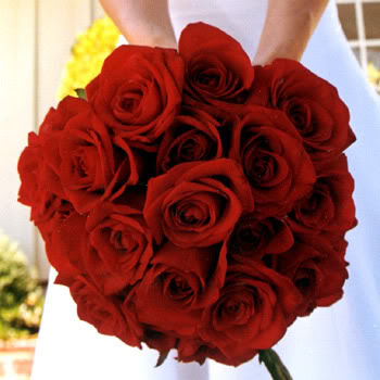 rose flowers bouquet. tighter red roses bouquet: