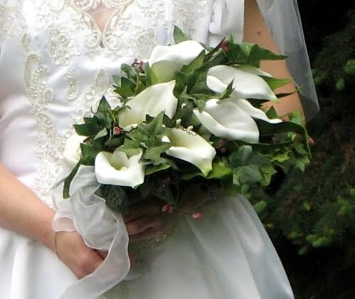Gorgeous white calla lilies wedding bouquet with green foliage