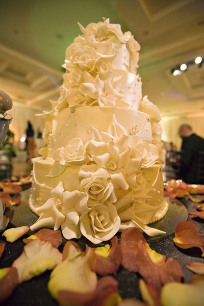 Pictures Wedding Cakes on Wedding Cakes Pictures  Pale Sugar Rose Wedding Cakes