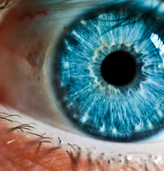 Bright blue eye color