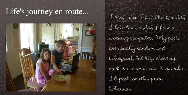 Life's Journey...En Route