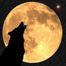 Ululando alla luna