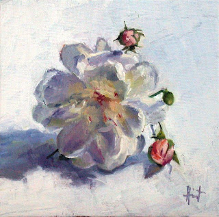 Little White Rose by Liza Hirst