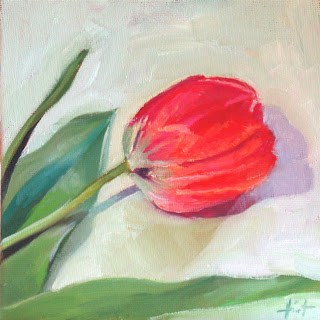 Study of Tulip by Liza Hirst
