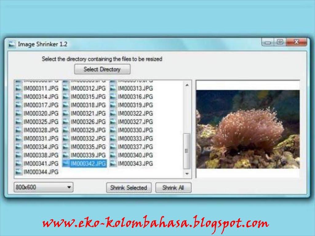 Software memperkecil ukuran foto tanpa mengurangi kualitas 5