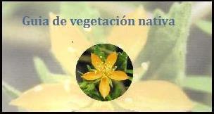 GUIA DE VEGETACIÓN NATIVA