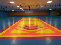 Skate Floors