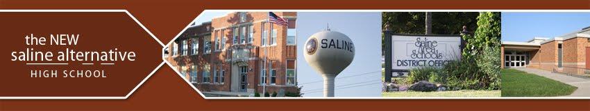 NEW Saline Alternative Blog