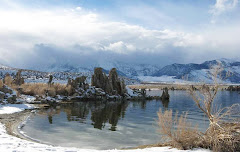 Mono lake, the Carle's home, is on the 38th Parallel