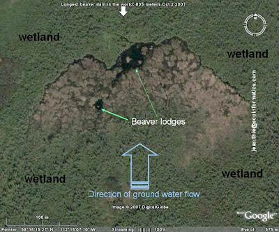 World's Largest Beaver Dam - Photos from space