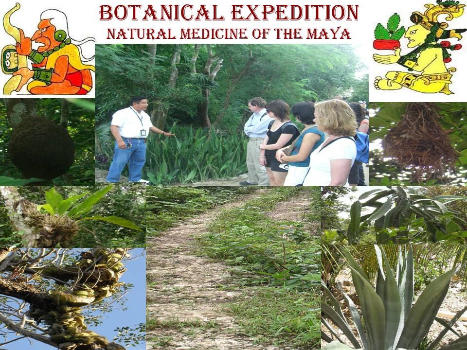 BOTANICAL EXPEDITION