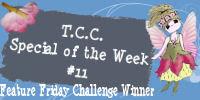 Winner week #11 - February 2010