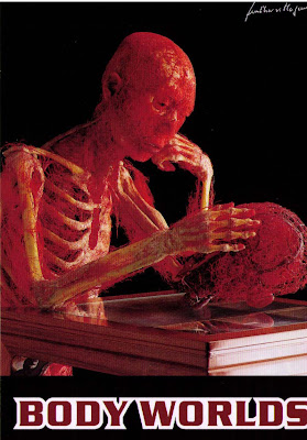 external image bodyworlds-copy_edited.jpg
