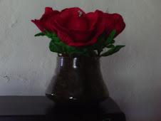 Vaso de Rosas!