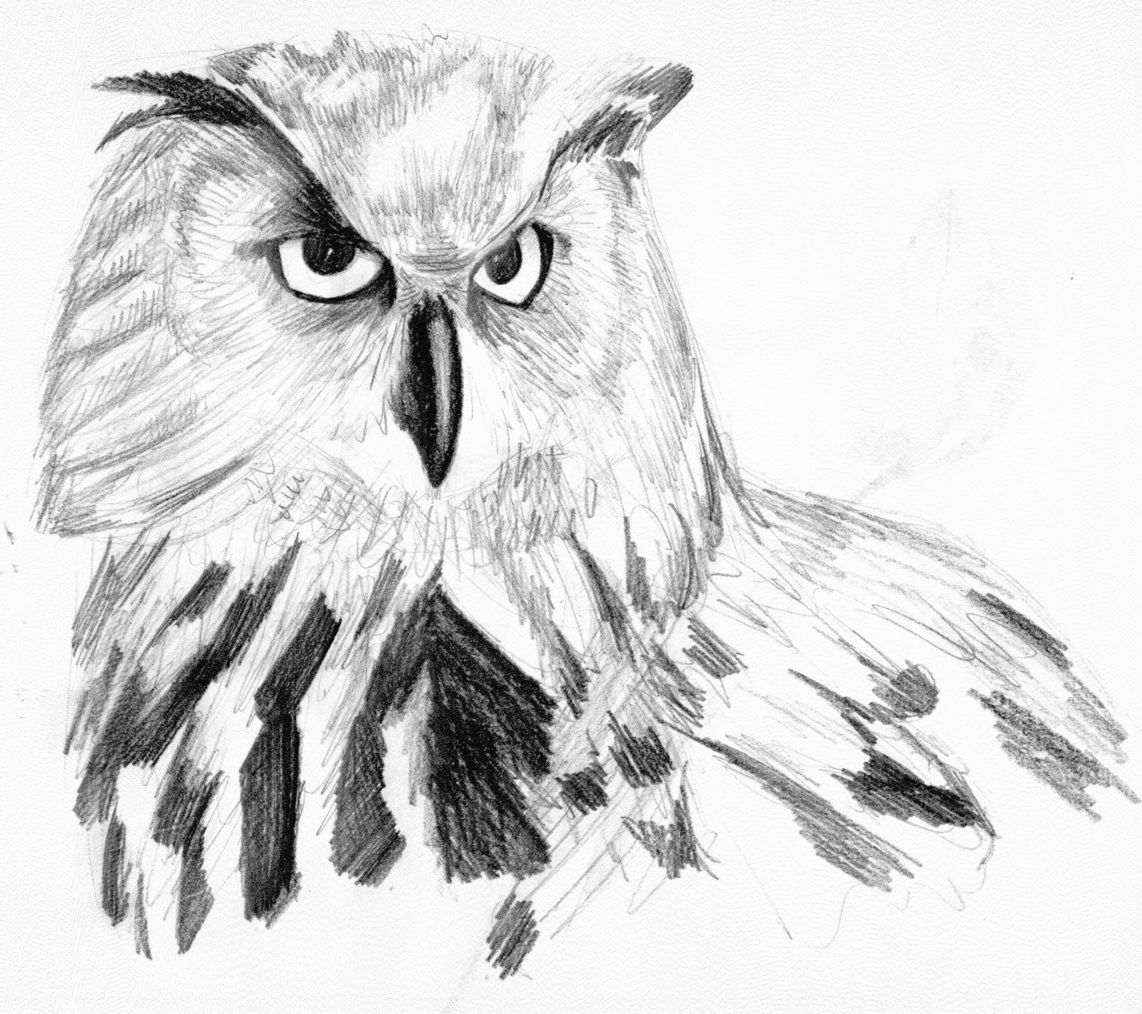 It Seemed Funny at the Time: Sketches: Birds