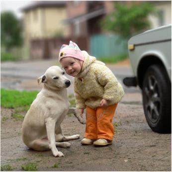 dog kid3 - Animais Domésticos e Crianças - Quando os acidentes acontecem - Parte 2