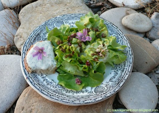 Salade aromatique
