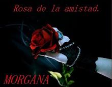 LA ROSA DE MORGANA