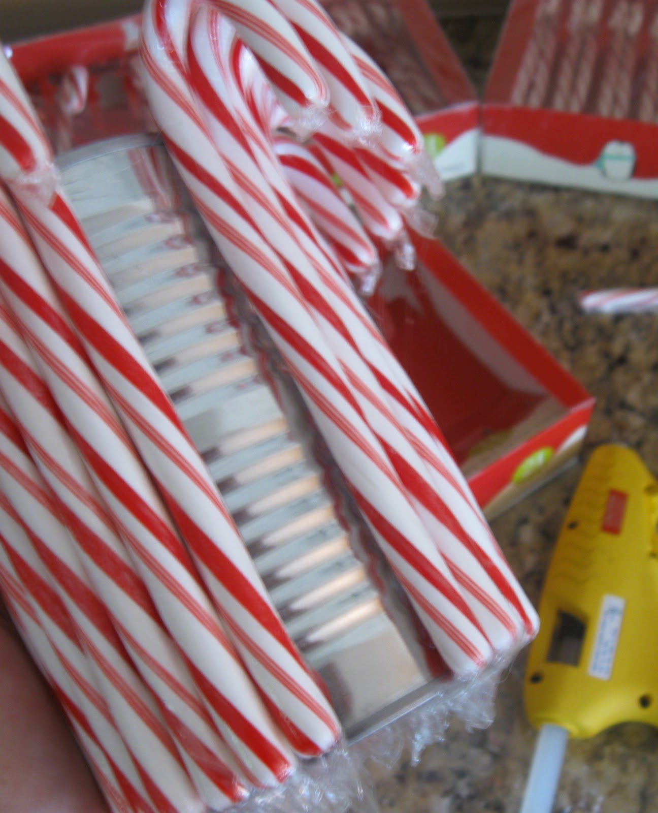 glue the candy canes around the entire outside of the aluminum can