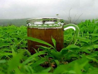 أمراض تعالجها أكواب الشاي