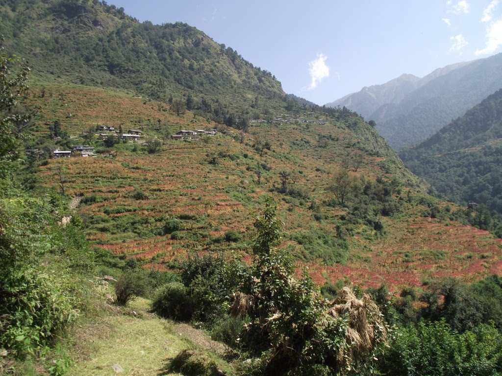A Year in India: Assi Ganga River Valley trip