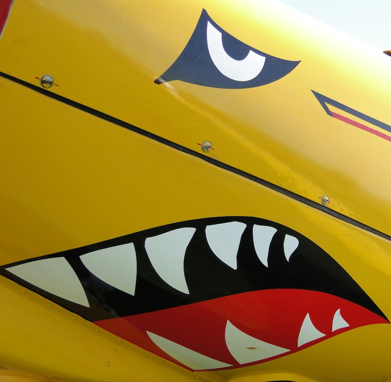 recherche jouet Gueule+de+requin