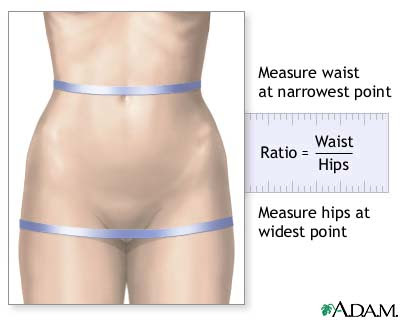 The diabetes dietitian, what is the reason of dizziness, hip to waist ratio attractive, blood ...