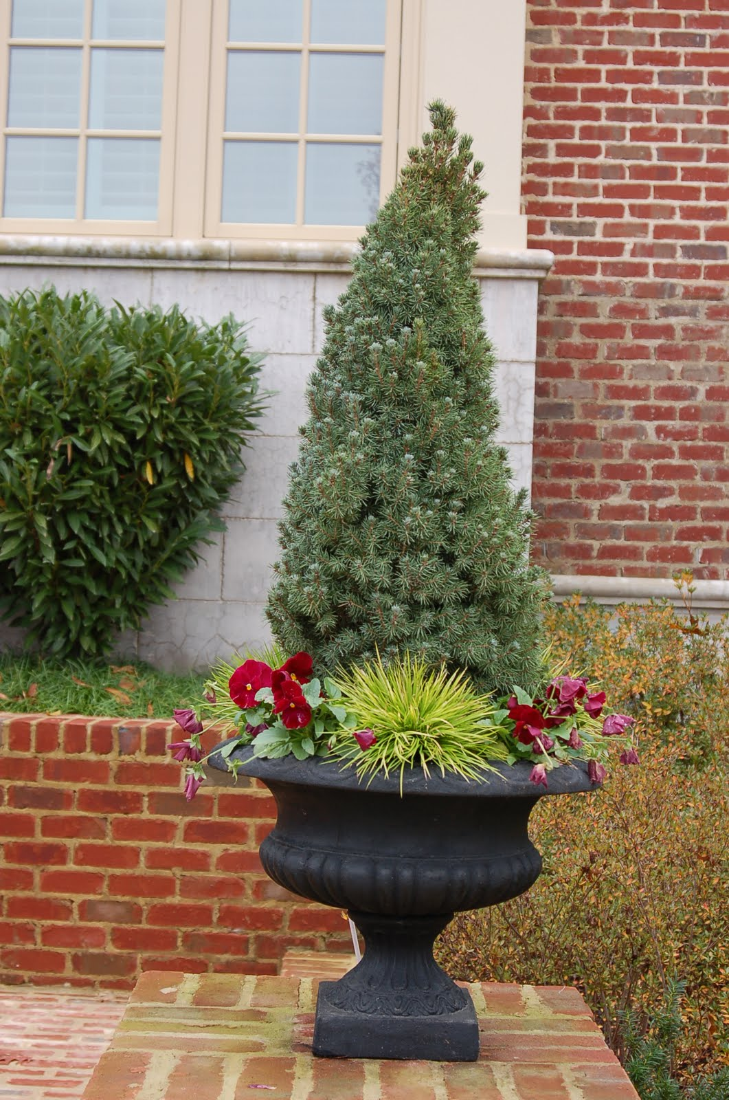 bwisegardening: Day 58 - Christmas Tree Containers