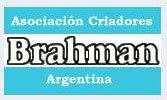 BRAHMAN - ARGENTINA