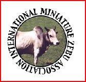 CEBU MINIATURA - MUNDO