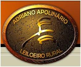 ADRIANO APOLINARIO