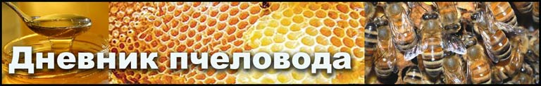 Bees Bible - Дневник пчеловода