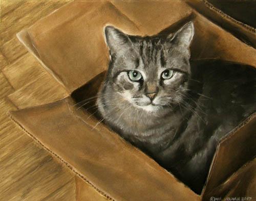 [Cat+In+A+Box.-1.jpg]