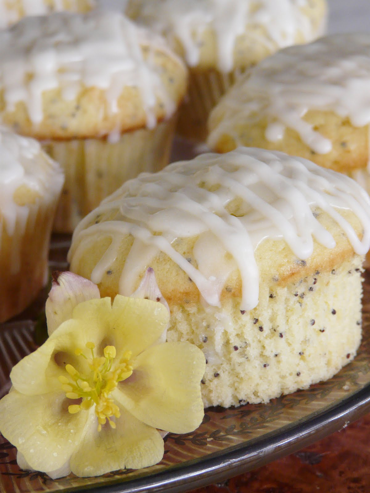 Thibeault's Table: Glazed Lemon Poppy Seed Muffins - Saturday Blog ...