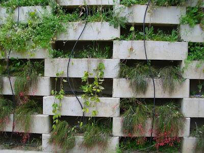 Naturaleza verde del legolas sistema de riego por goteo for Sistema de riego jardin vertical
