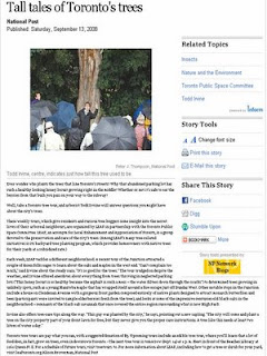 Screenshot: National Post, Tall tales of Toronto's trees