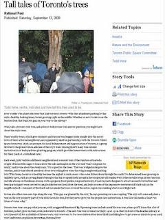 Screenshot: National Post, Tall tales of Toronto's trees