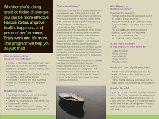 Flyer: The Power of Paying Attention: Mindfulness-Based Stress Reduction (MBSR) Program at The Art of Life Health Centre