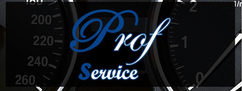Prof Service - Buzau