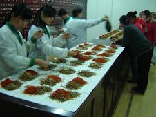 FARMÁCIA CHINESA