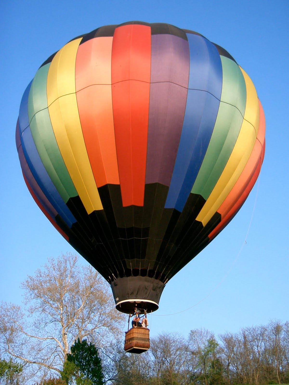 unique wedding in ann arbor michigan with hot air balloon rides