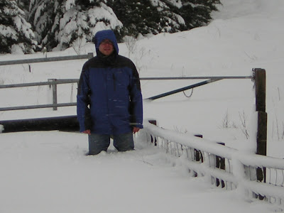 >Heavy snow tonight and a very cold end to Winter 2009-10 in Britain, NEW Updates and Images!