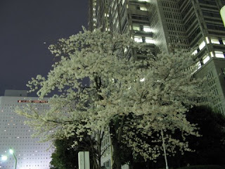 Tokyo Metropolitan Government Building, Shinjuku.
