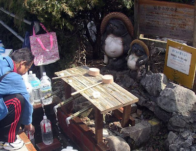 Izumo Sakana spring