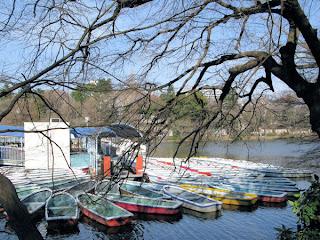 Inokashira Park - lake.