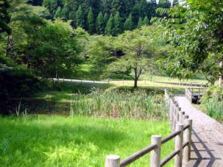 Hiraizumi walk
