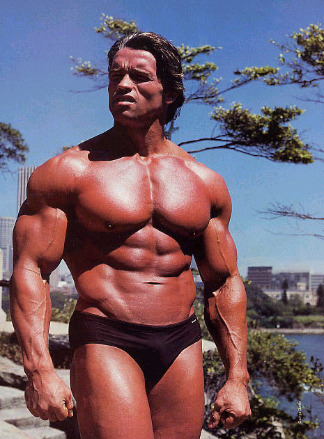 arnold schwarzenegger now and before. arnold schwarzenegger now and
