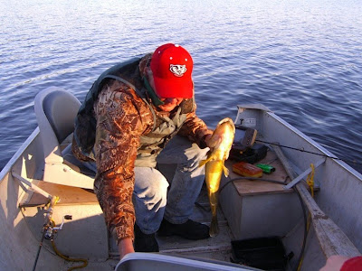 another big walleye
